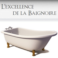 r paration de douche en mail ou acrylique mascouche et terrebonne l 39 excellence de la baignoire. Black Bedroom Furniture Sets. Home Design Ideas